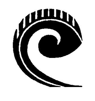 Te Kura Kaupapa Maori O Wairarapa